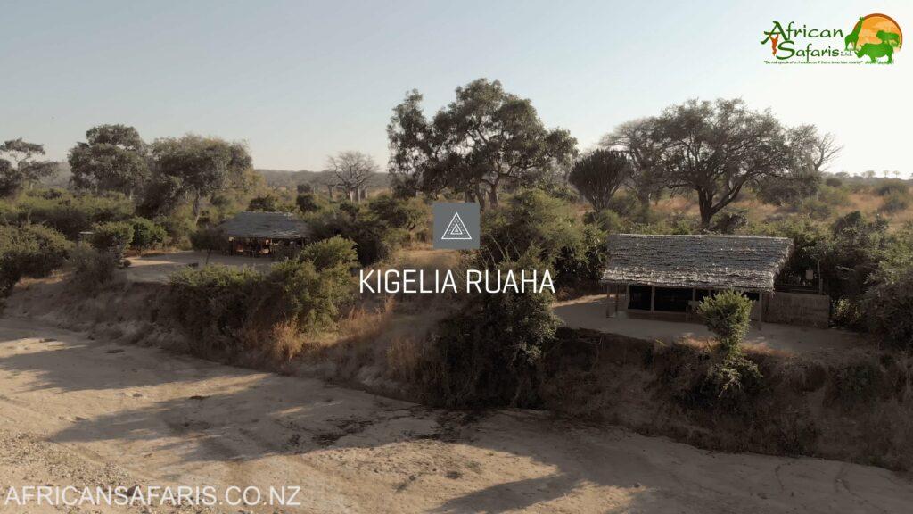 Kigelia, Ruaha National Park