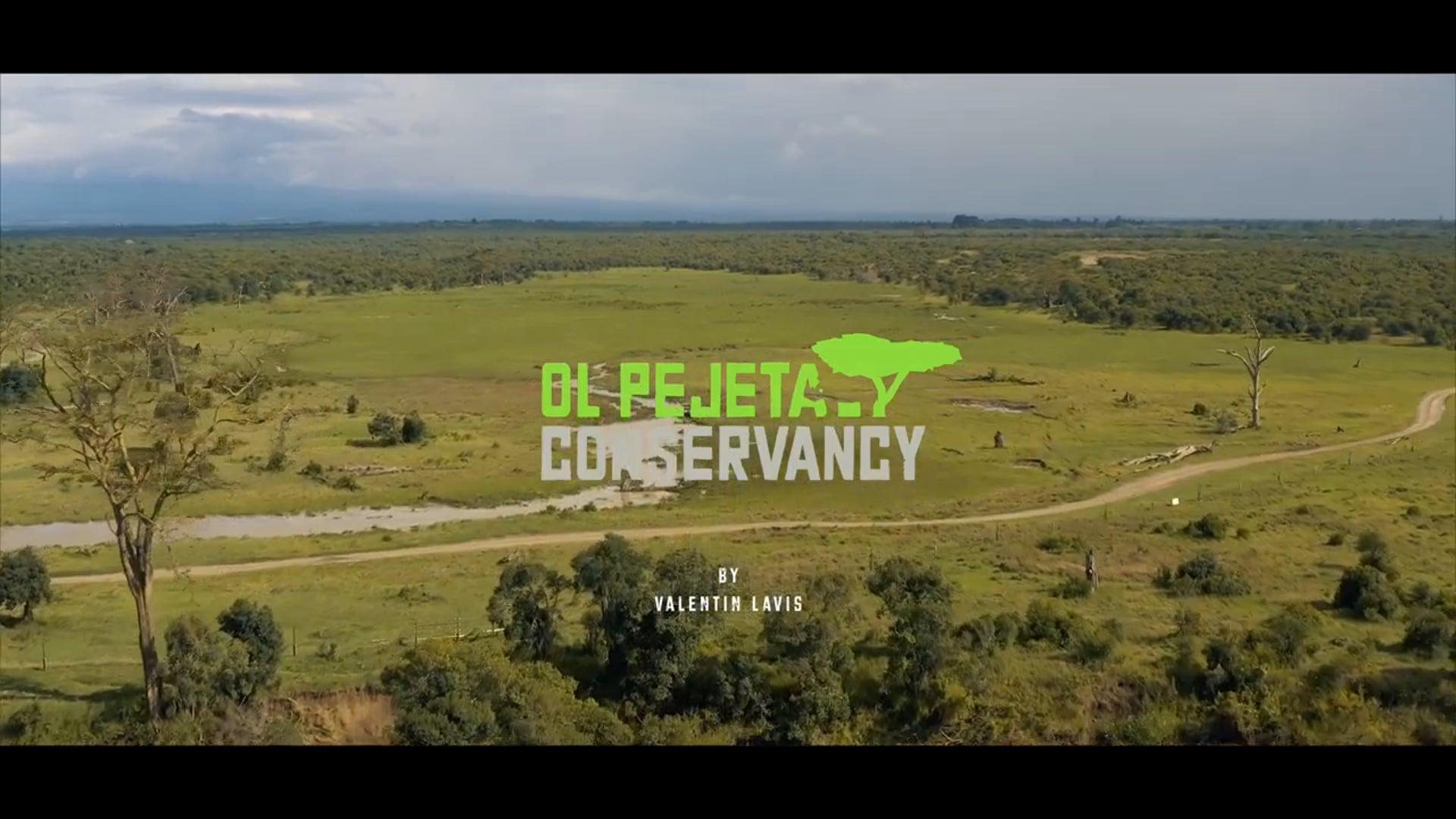 Ol Pejeta Conservancy, Gateway to Laikipia