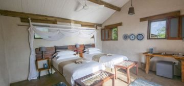 10-day Botswana Best Value Safari
