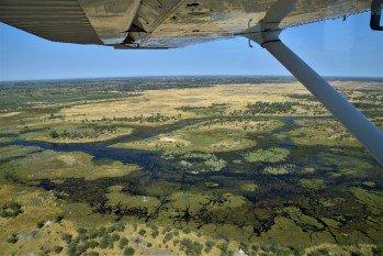 Okavango Delta water levels: An Explanation