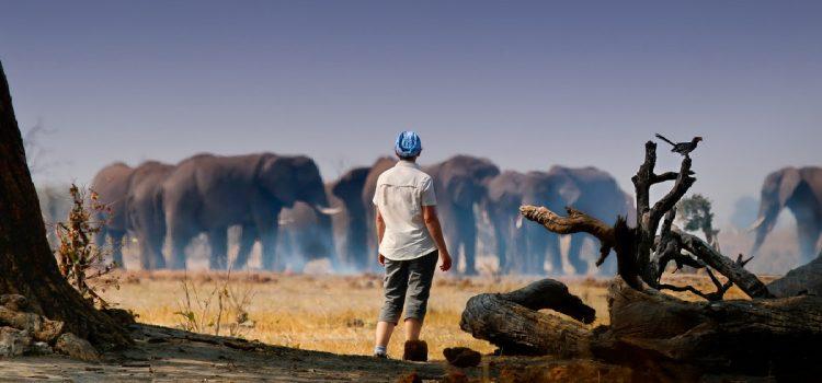 Journey to Botswana