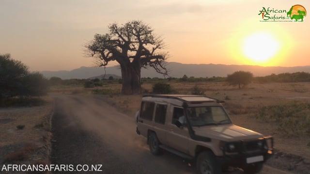 African Sunset, Tarangire National Park