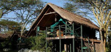 8-day Splendours of Kenya (Bronze)