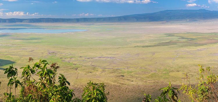 Increase in Ngorongoro Conservation Area fees