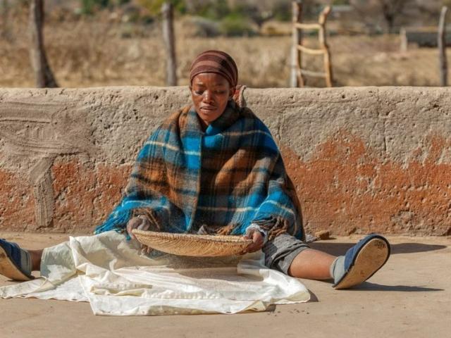 Sorghum, the essential African grain