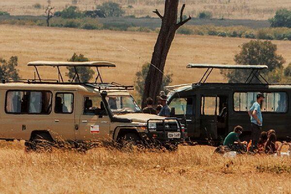 Custom Tailor-made Safaris vs Scheduled Safaris