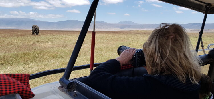 Kenya or Tanzania.  Which is the best safari destination?