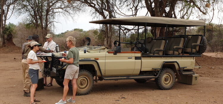 A typical day on an African safari