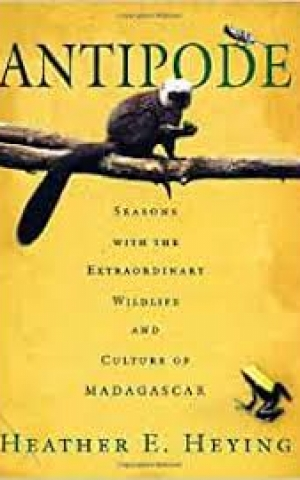 Antipode: Seasons with the Extraordinary Wildlife and Culture of Madagascar, by Heather E. Heying
