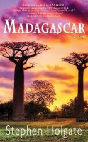 Madagascar, by Stephen Holgate