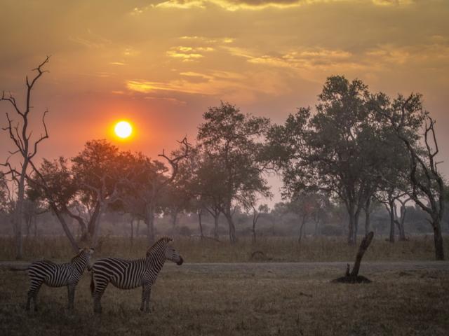 Chamilandu Bushcamp, Zambia