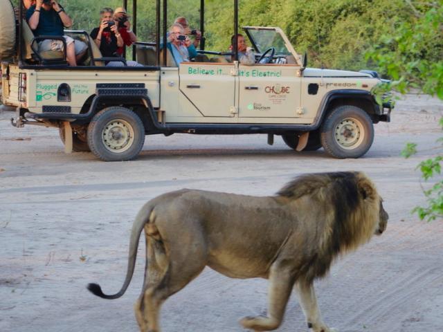 Chobe Game Lodge, Botswana