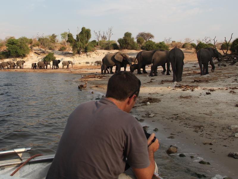 Chobe River Front, Botswana