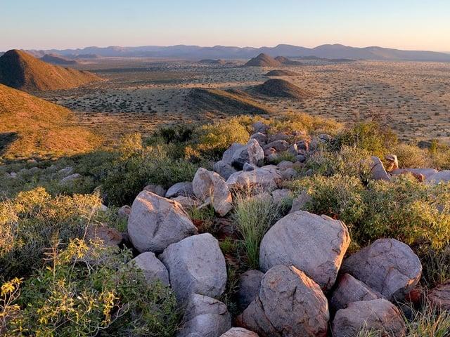 Greater Kruger National Park, South Africa
