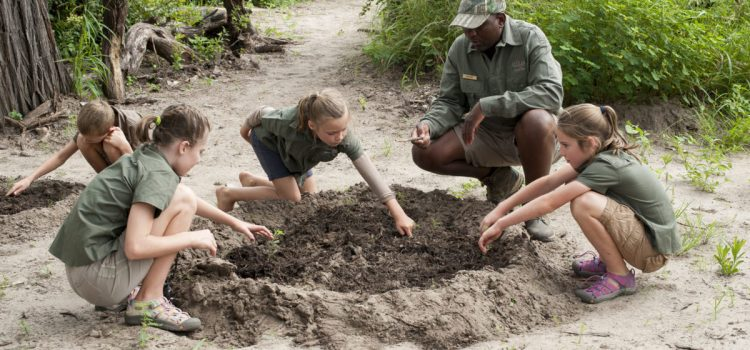 Family Safaris – Factors to Consider