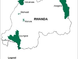 Gishwati-Mukura National Park, Rwanda