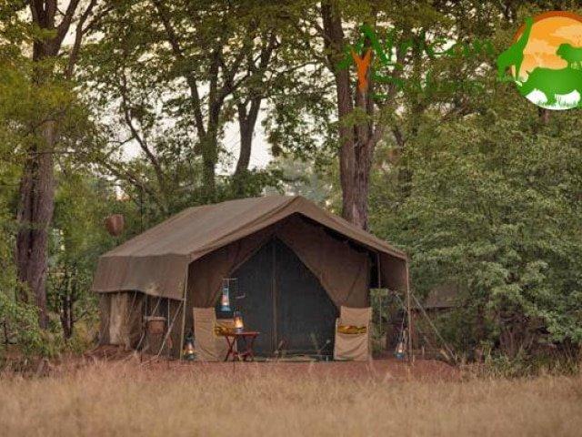 Hwange Bush Camp