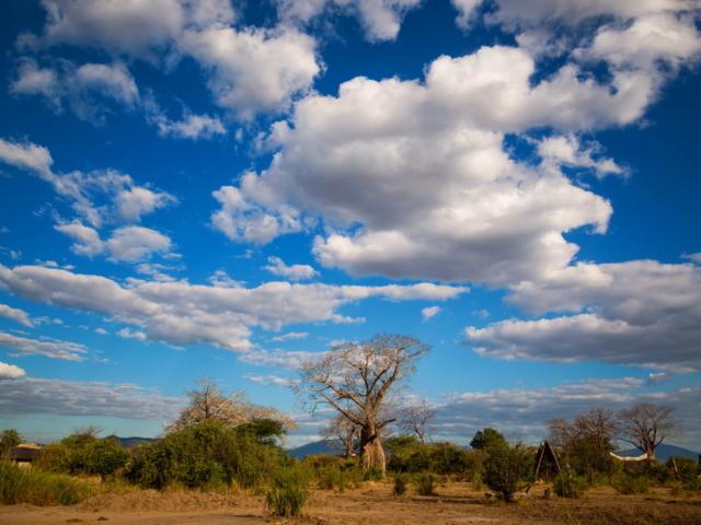 Liwonde National Park, Malawi