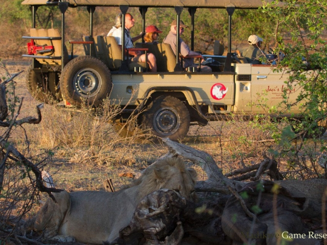 Madikwe Private Game Reserve, South Africa