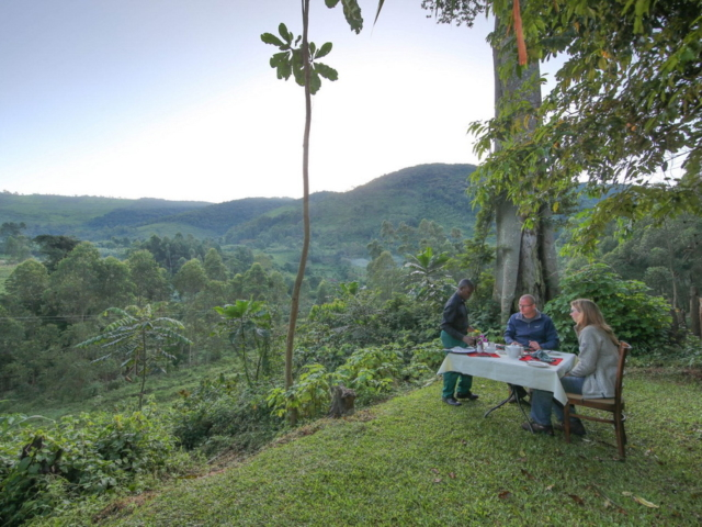 Mahogany Springs, Bwindi, Uganda