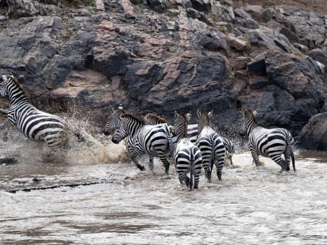 Mara North Conservancy, Kenya