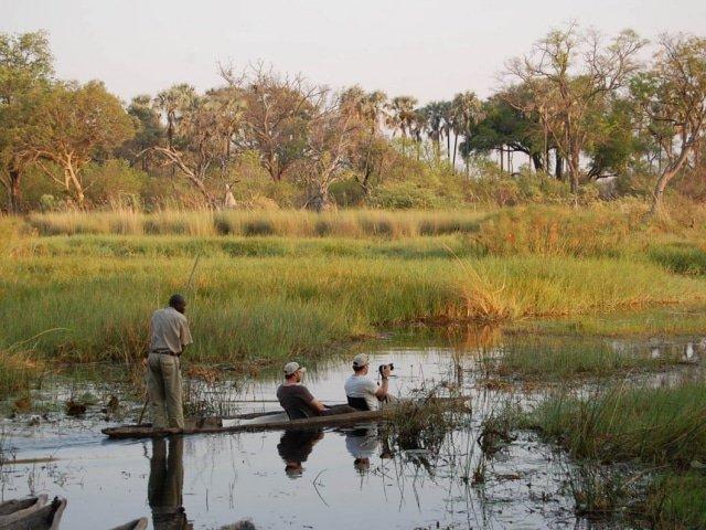 12-day Desert, Delta and Wildlife