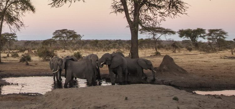 When is a good time to travel to Namibia?