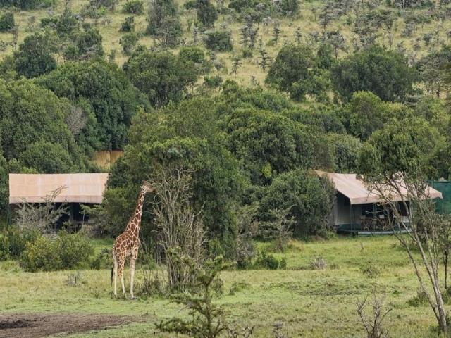 Rhino Camp, Ol Pejeta Conservancy, Kenya