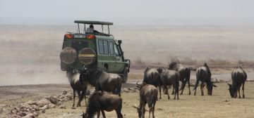 13-day East African Explorer – Sopa Lodges
