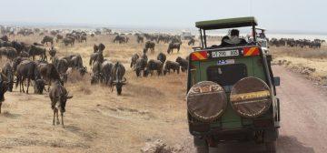 8-day Tanzania Lodge Safari – Serena Lodges