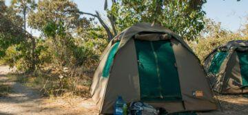 16-day Zimbabwe and Botswana – Game Trail