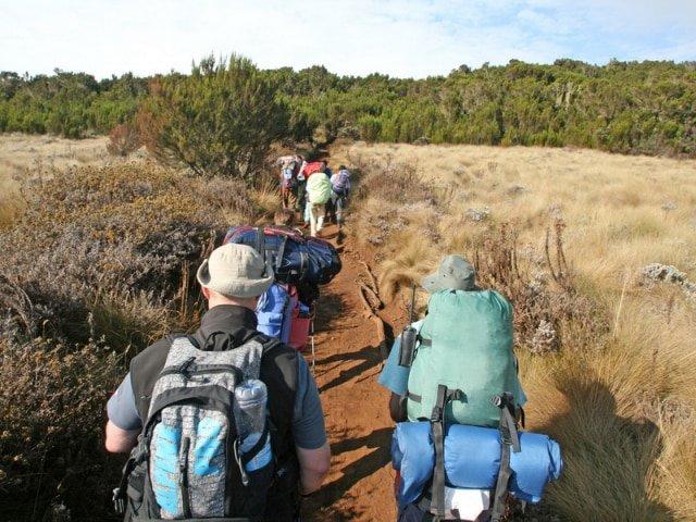 8-day Kilimanjaro – Marangu Route (Huts)
