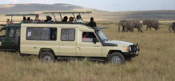10-day East African Migration Explorer