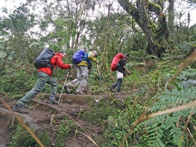 9-day Kilimanjaro - Machame Route (Camping)