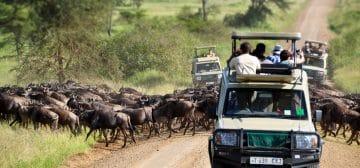 12-day Tanzania and Kenya Adventure Camping Safari