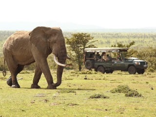 Game-viewing in private wildlife conservancies
