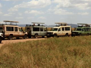 Game-viewing in national parks and game reserves