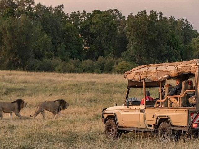 Kenya Safari Vehicle
