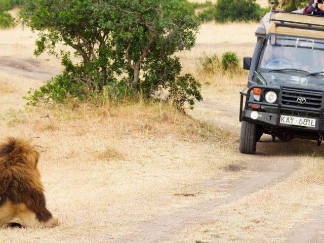 Closed 4WD Safari Vehicle