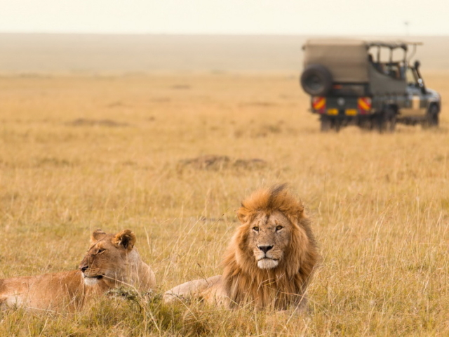 Open 4WD Safari Vehicle