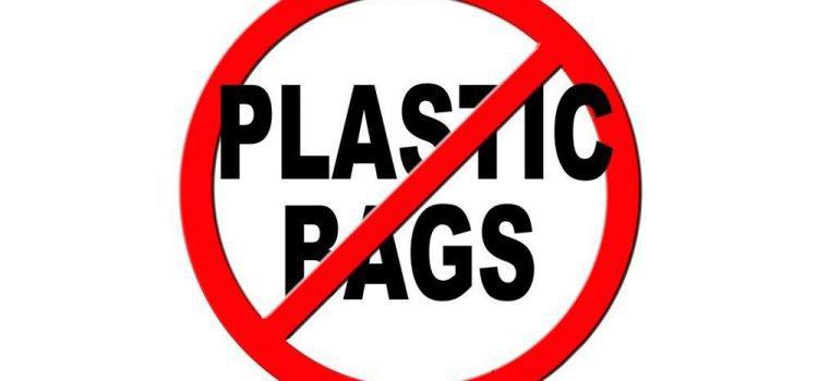 Botswana Bans Plastic Bags