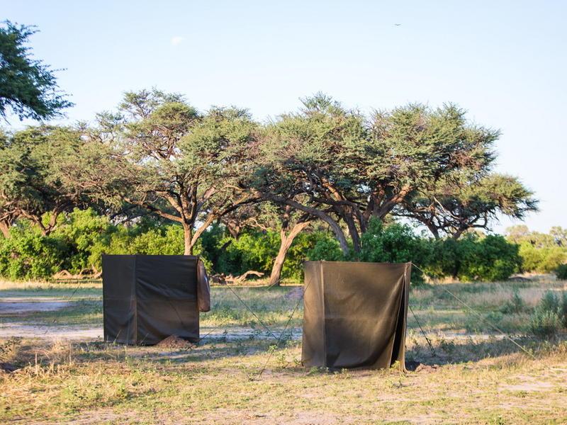 Semi-Participation Mobile Camping Safari, Botswana