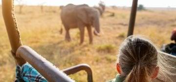 9-day Botswana Family Safari (Standard)