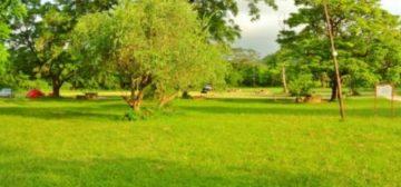 Great Zimbabwe Monument Campsite