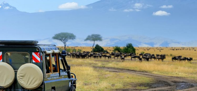 When is a good time to travel to Kenya?
