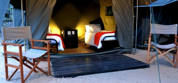 Pretoriuskop Rest Camp – Tenting