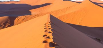 7-day Northern Namibia Adventure (Accommodated)