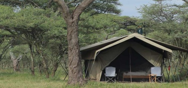 Serengeti North Wilderness Camp