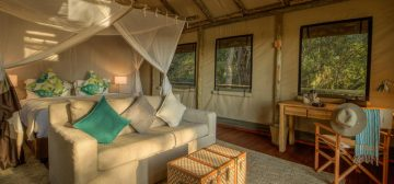11-day Botswana and Zimbabwe Safari (Standard)