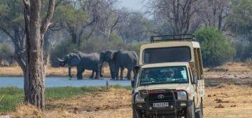 9-day Botswana Baobabs and Okavango Delta